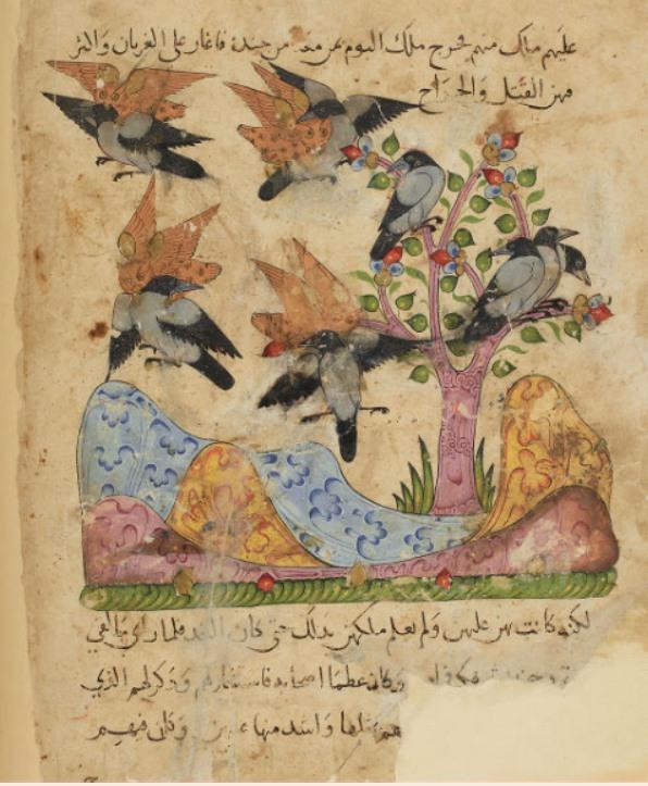 Kalîla et Dimna, Egypte ou Syrie, 14e siècle (BNF) : représentation de la fable « Les hiboux et les corbeaux » dont la dimension morale incite à la prudence face aux ennemis.
