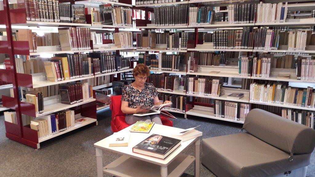 bibliotheque accueil